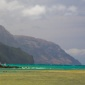 Thumb_thanksgiving_kauai_hawaiitourismauthority_torjohnson_470x149